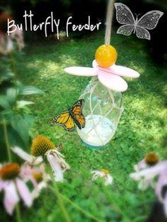 DIY Backyard Butterfly Feeder