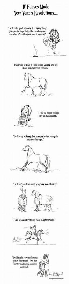 Lieve allemaal,  De allerbeste wensen voor 2017! Dat we maar heel erg mogen genieten van onze paarden en van elkaar. Mijn goede voornemens? Nog meer eigenaren en paarden helpen natuurlijk! :D Wat willen jullie graag aanpakken volgend jaar?  Www.facebook.com/paarden0taal   #gelukkignieuwjaar #advies  #paardentraining  #paarden #horsesofinstagram  #horselover  #followme