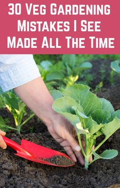 I see these mistakes made all the time. How many of them are you making? - 30 Veg Gardening Mistakes I See Gardeners Make All The Time Planting Vegetables, Growing Vegetables, Growing Plants, Vegetable Garden Planning, Vegetable Garden Design, Vegetable Gardening, Fruit Garden, Edible Garden, Gardening For Beginners