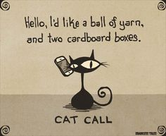 Cat Call - Brainless Tales