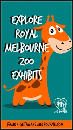 What's your favorite Melbourne Zoo Exhibit? Have you checked all the animals out as yet? Click this image for more information. Melbourne Zoo, Central Business District, Family Getaways, Animal Species, Unique Animals, School Holidays, Exhibit, Day Trips, Image