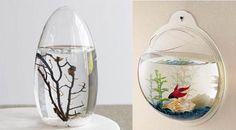 unique fish tanks