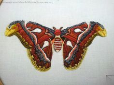 Hand embroidered atlas moth