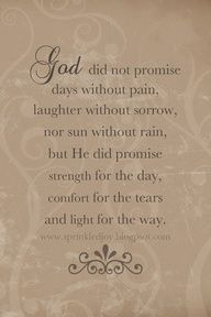 God did not promise days without pain... but He did promise strength for the day, comfort for the tears, and light for the way.