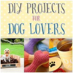DIY Projects for Dog Lovers, spoil your pooch with these cute crafts! Diy Projects For Dog Lovers, Animal Projects, I Love Dogs, Puppy Love, Crazy Dog Lady, Dog Crafts, Idee Diy, Pet Treats, Diy Stuffed Animals