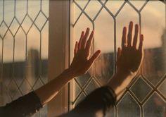 empty hands & heavy hearts