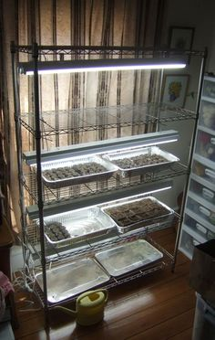 The Blogging Farmer » Blog Archive » How to Build a Fluorescent Grow Stand to Start Seeds Indoors
