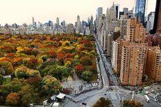 Lombard Street, Alesund, Central Park, New York Central, Nyc Fall, Autumn In New York, Autumn Fall, New York Wallpaper, City Wallpaper