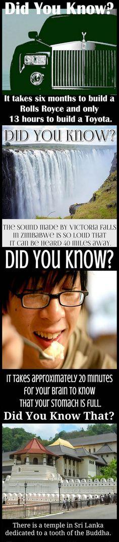 Amazingly Weird & Interesting but Strange Facts