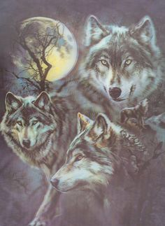 W-8 Wolf Faces and Moon 3D Picture