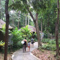 Jungle fiever feeling in Koh Yai Yao