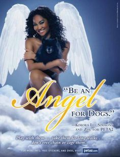 Be an Angel for dogs