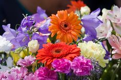 Spring....perfect time for a floristry course we think! http://www.hotcourses.com/uk-courses/Floristry-courses-in-the-UK/hc2_search.adv_col_do/16180339/0/search_category/SE.7/qualification/Z,Y,Q,R,T,U,V,C/town_city/United+Kingdom/page.htm
