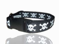 Ship Mate Skull And Crossbone Dog Collar From £10- Max!