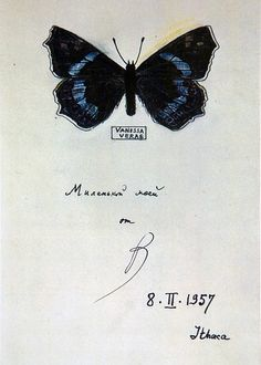 "VLADIMIR NABOKOV, BUTTERFLY DRAWING 1957: ""made on title pages of various editions of his works as a gift to his wife and son"" - so cool."