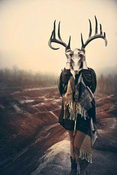 #deer #antlers #horns