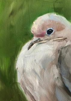 """Daily Paintworks - """"Plump Dove"""" - Original Fine Art for Sale - © Gary Bruton"""