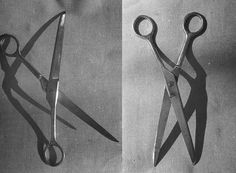 scissors by Rotaenko Olga, via Behance