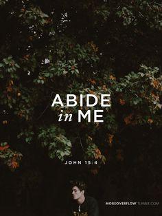 Abide in Me  John 15:4   #30daysofbiblelettering