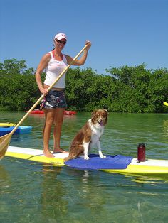Want to do this with my dog so bad.