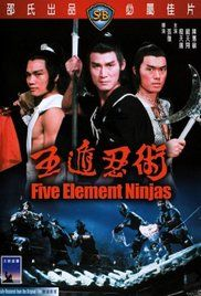 A young martial artist seeks revenge on the Ninja who kills his martial arts brothers and teacher. He finds help in the form of a new teacher (who knows Ninjitsu) and new brothers.