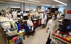 Three-day assessment very successful for GBGH lab team - Midland News Victoria Harbour, Hematology, Microbiology, Local News, Three Days, Assessment, Chemistry, Lab, Success