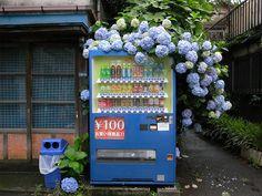 Yoyogi Tokyo, Japan ~ by ogino. Aesthetic Japan, Japanese Aesthetic, City Aesthetic, Aesthetic Photo, Aesthetic Pictures, Building Aesthetic, Japanese Buildings, Japanese Streets, Japanese Store