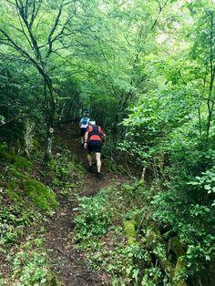 North Olympus Trail 2017
