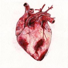 human heart art - Google Search