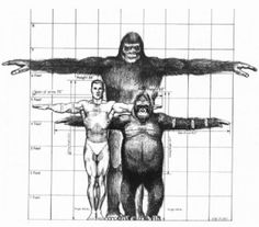 Sasquatch or better known as Bigfoot is usually described as a large, hairy, bipedal humanoid. The scientific community considers Bigfoot to be a combination of folklore, misidentification, and hoax, rather than a real creature.