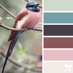 Nature-Inspired Color Palettes AKA Design Seeds For Designers, Crafters And Home Decorators | Bored Panda