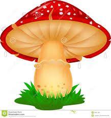 Resultado de imagem para cogumelos desenhos coloridos