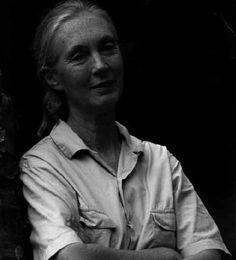 wonderful Jane Goodall