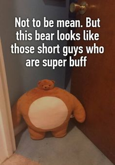 """Not to be mean. But this bear looks like those short guys who are super buff       """