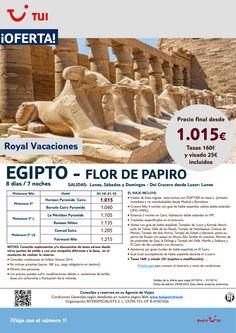 ¡Nuevos Precios! Oferta Egipto - Flor de Papiro. Octubre. Precio Final desde 1.015€ incluye Visado ultimo minuto - http://zocotours.com/nuevos-precios-oferta-egipto-flor-de-papiro-octubre-precio-final-desde-1-015e-incluye-visado-ultimo-minuto/