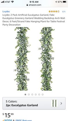 Arched Wall Decor, Artificial Eucalyptus Garland, Garden Bridal Showers, Greenery Garland, Garland Wedding, Hanging Plants, Festival Party, Backdrops, Color
