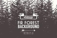 Fir forest background - Illustrations