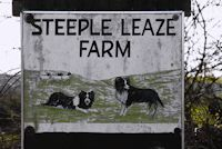Chilled out and first come first served its Steeple Leaze Farm camping site - just pop the tent in the car and turn up!