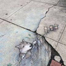 灰色の狼の救助