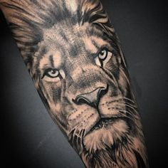 Leds tattoo tatuagem realismo wally 03 pints tattoos, lion t Leo Lion Tattoos, Tattoos 3d, Bild Tattoos, Neue Tattoos, Large Tattoos, Animal Tattoos, Lion Sleeve, Lion Tattoo Sleeves, Sleeve Tattoos