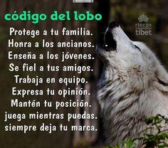 Código del lobo. Protege a tu familia, Honra a tus ancianos .....