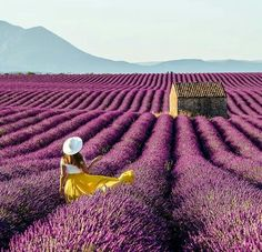 Relaxing Images, Provence Lavender, Beautiful Places To Travel, South Of France, Dream Vacations, Monument Valley, Trip Planning, Travel Photography, Outdoor Blanket