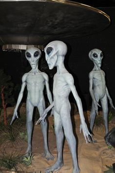 International UFO Museum and Research Center – Roswell, New Mexico - Atlas Obscura Alien Pictures, Alien Photos, Creepy Photos, Aliens Und Ufos, Ancient Aliens, Alien Sightings, Ufo Sighting, Simpsons Drawings, Roswell New Mexico