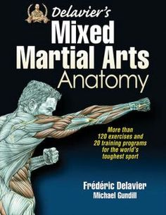 Mixed Martial Arts Anatomy