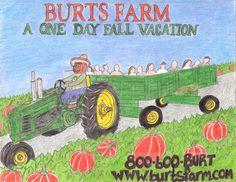 Burt's Farm in Dawsonville, Georgia. Tons of pumpkins and other fun fall festivities.