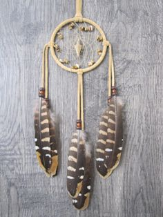 Dream Catcher Buckskin Suede with Reeves Venery Pheasant Feathers by FeathersandSinew on Etsy