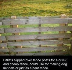 Usare i pallets per steccato