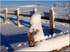 Ló karám télen Fence, Outdoor, Outdoors, The Great Outdoors