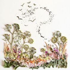 Потрясающие картины Бриджит Бет Коллинз, созданные самой природой (28 фото)