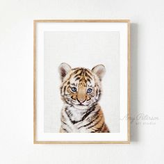 Baby Tiger Cub, Safari Baby Animal for Nursery Art, Safari Wall Art, Baby Tiger by Amy Peterson – Kari Gobec - Baby Animals